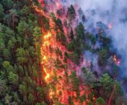 fire in Siberia