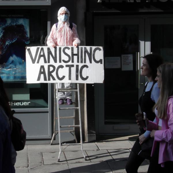 rebel on step ladder holding sign - vanishing arctic
